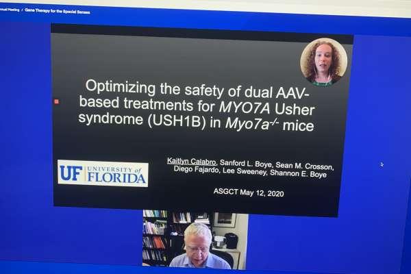 Screenshot of Dr. Calabro giving a Zoom presentation